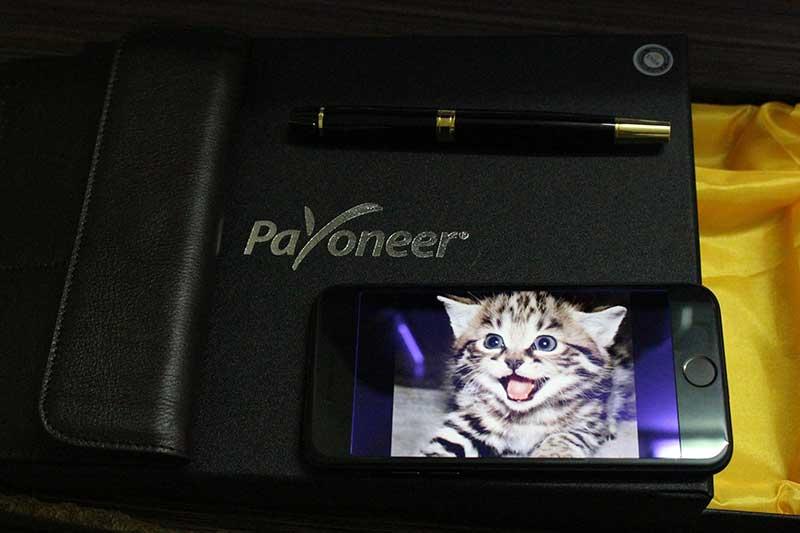 vip-payoneer