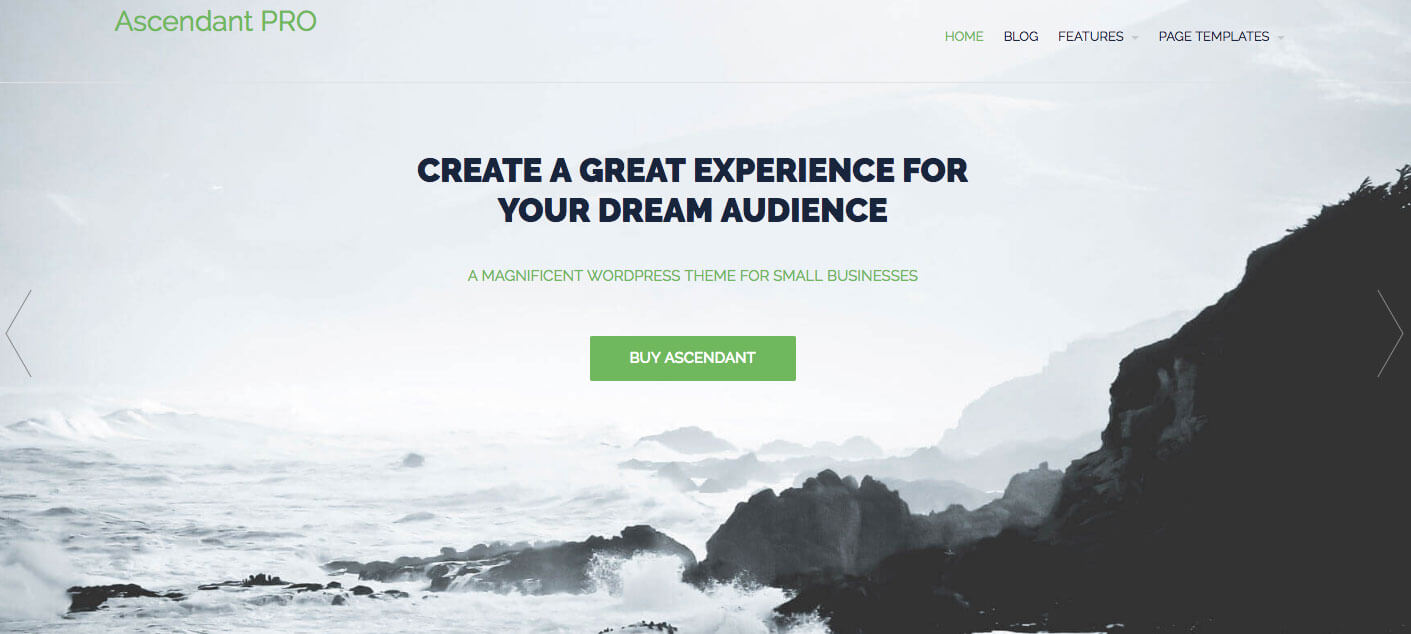 landing-page-dich-vu-wordpress-theme-ascendant