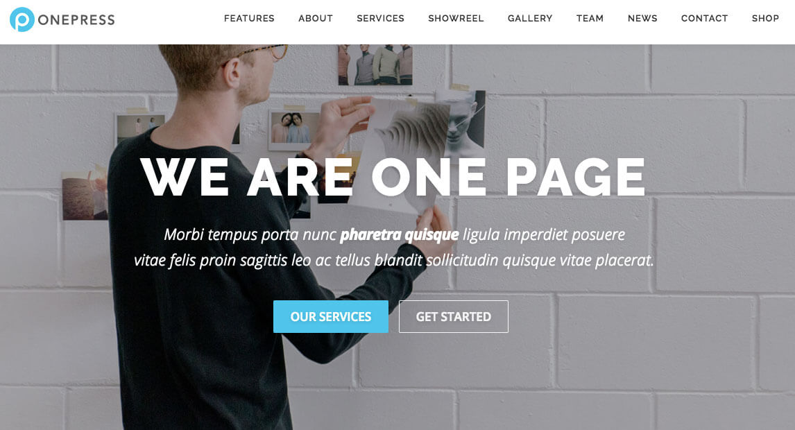landing-page-dich-vu-wordpress-theme-onepress